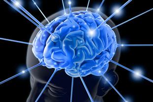 Leggi l'articolo sulla Sclerosi Multipla e le Terapie Naturali