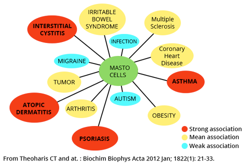 Associations between activity of mast cells and diseases.